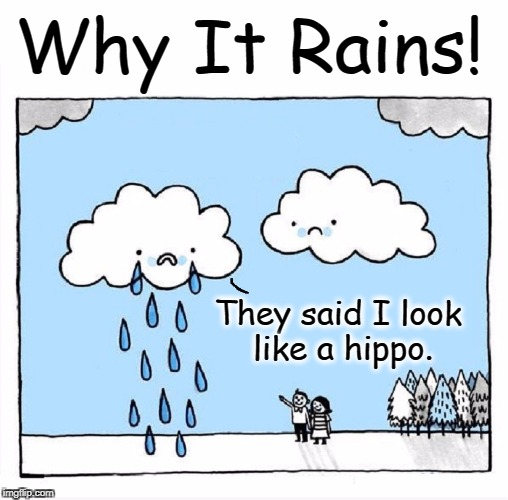 Tears of a Clown... I mean, Cloud | They said I look like a hippo. Why It Rains! | image tagged in vince vance,clouds,sticks and stones,name calling,science of precipitation,raindrops keep falling on my head | made w/ Imgflip meme maker