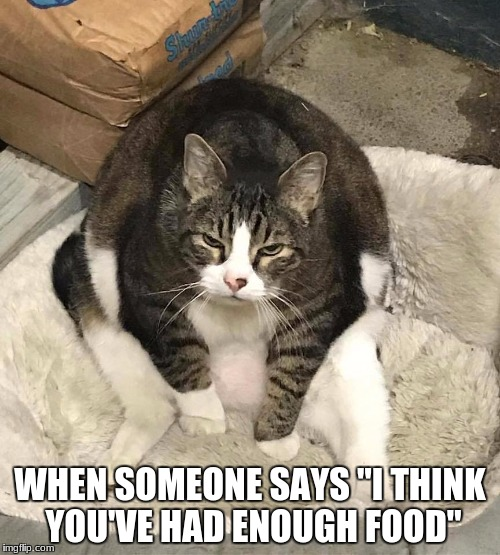 "WHEN SOMEONE SAYS ""I THINK YOU'VE HAD ENOUGH FOOD"" 