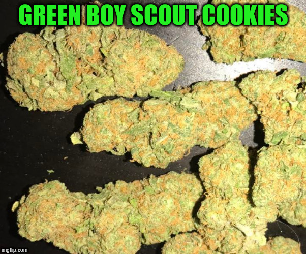 GREEN BOY SCOUT COOKIES | made w/ Imgflip meme maker