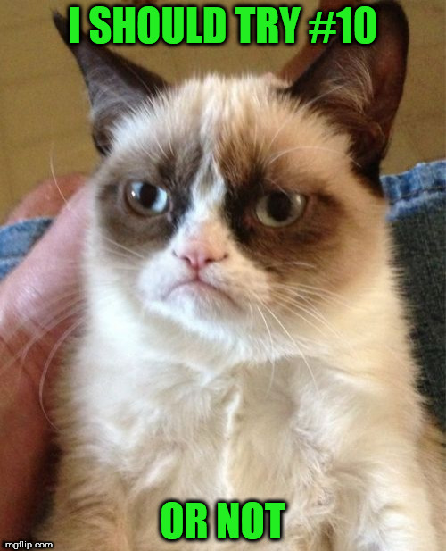 Grumpy Cat Meme | I SHOULD TRY #10 OR NOT | image tagged in memes,grumpy cat | made w/ Imgflip meme maker