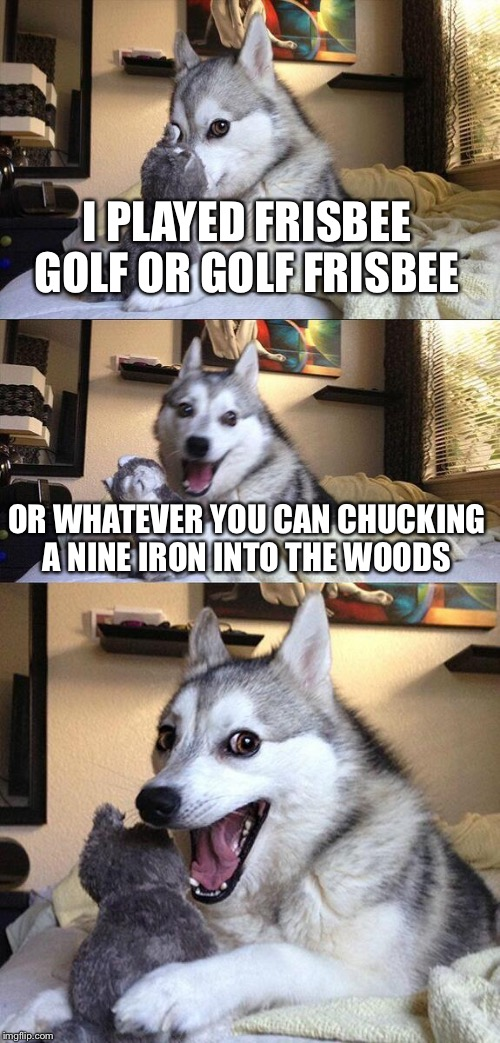 Bad Pun Dog Meme | I PLAYED FRISBEE GOLF OR GOLF FRISBEE OR WHATEVER YOU CAN CHUCKING A NINE IRON INTO THE WOODS | image tagged in memes,bad pun dog | made w/ Imgflip meme maker