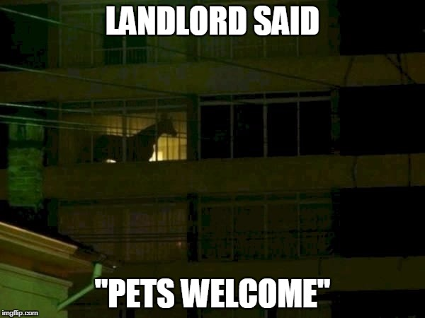 "LANDLORD SAID ""PETS WELCOME"" 