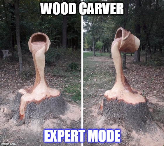 cool | WOOD CARVER EXPERT MODE | image tagged in wood,tree | made w/ Imgflip meme maker