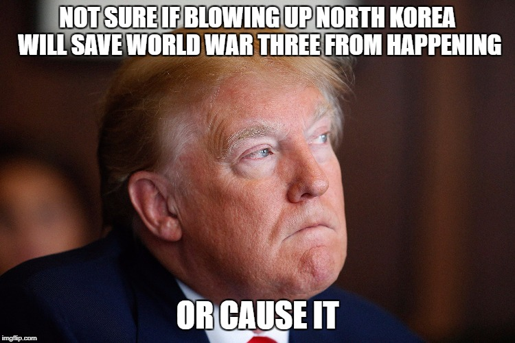 NOT SURE IF BLOWING UP NORTH KOREA WILL SAVE WORLD WAR THREE FROM HAPPENING OR CAUSE IT | made w/ Imgflip meme maker