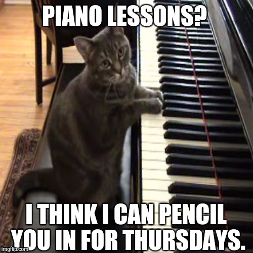 PIANO LESSONS? I THINK I CAN PENCIL YOU IN FOR THURSDAYS. | made w/ Imgflip meme maker