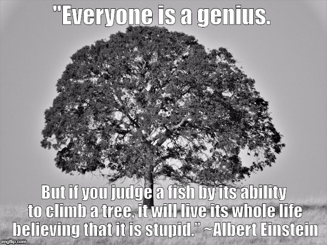 "We all have different and unique abilities to be celebrated. | ""Everyone is a genius. But if you judge a fish by its ability to climb a tree, it will live its whole life believing that it is stupid."" ~Al 
