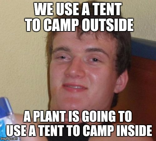 10 Guy Meme | WE USE A TENT TO CAMP OUTSIDE A PLANT IS GOING TO USE A TENT TO CAMP INSIDE | image tagged in memes,10 guy,AdviceAnimals | made w/ Imgflip meme maker