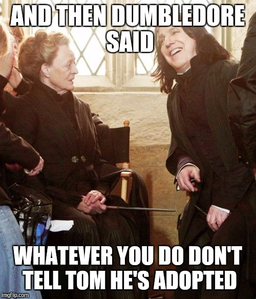 Might cause duality | AND THEN DUMBLEDORE SAID WHATEVER YOU DO DON'T TELL TOM HE'S ADOPTED | image tagged in severus snape | made w/ Imgflip meme maker