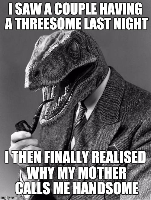 Philosoraptor | I SAW A COUPLE HAVING A THREESOME LAST NIGHT I THEN FINALLY REALISED WHY MY MOTHER CALLS ME HANDSOME | image tagged in philosoraptor | made w/ Imgflip meme maker