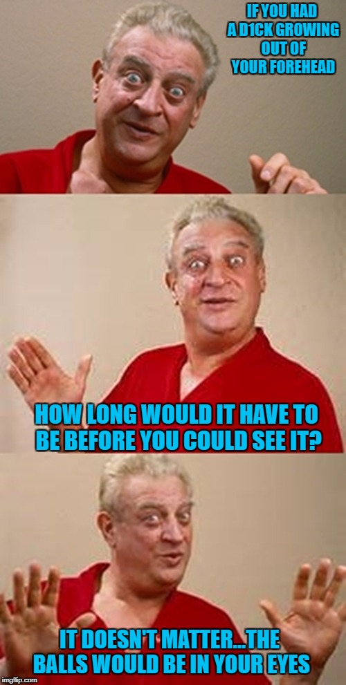 A joke I heard a long time ago... | IF YOU HAD A D1CK GROWING OUT OF YOUR FOREHEAD HOW LONG WOULD IT HAVE TO BE BEFORE YOU COULD SEE IT? IT DOESN'T MATTER...THE BALLS WOULD BE  | image tagged in bad pun dangerfield,memes,jokes,funny,rodney dangerfield | made w/ Imgflip meme maker