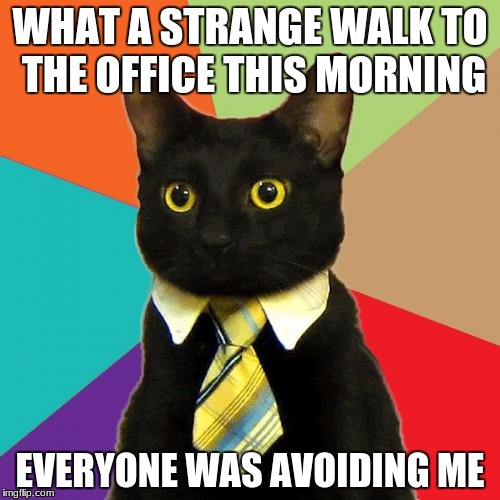 hapy friday the 13th. it's also my b-day today. | WHAT A STRANGE WALK TO THE OFFICE THIS MORNING EVERYONE WAS AVOIDING ME | image tagged in memes,business cat | made w/ Imgflip meme maker