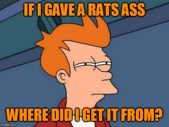 Futurama Fry Meme | IF I GAVE A RATS ASS WHERE DID I GET IT FROM? | image tagged in memes,futurama fry | made w/ Imgflip meme maker