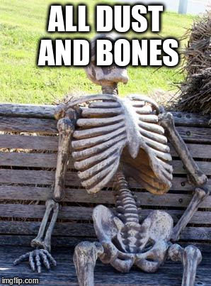 Waiting Skeleton Meme | ALL DUST AND BONES | image tagged in memes,waiting skeleton | made w/ Imgflip meme maker