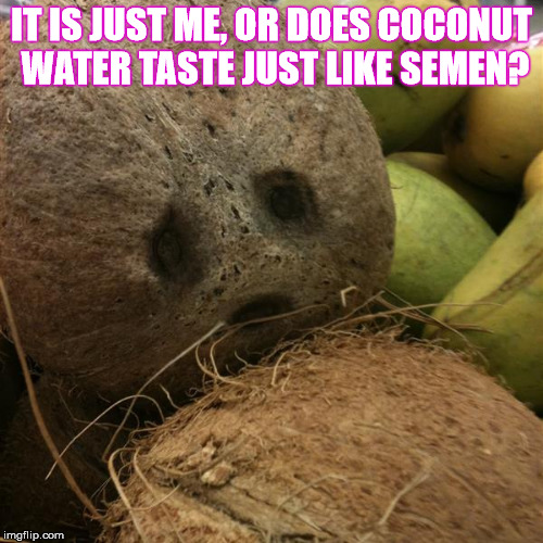 Are they hand-whipping coconut water now? | IT IS JUST ME, OR DOES COCONUT WATER TASTE JUST LIKE SEMEN? | image tagged in irma coconut,memes,coconut water,taste,nsfw,adult humor | made w/ Imgflip meme maker