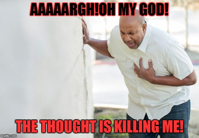 AAAAARGH!OH MY GOD! THE THOUGHT IS KILLING ME! | made w/ Imgflip meme maker