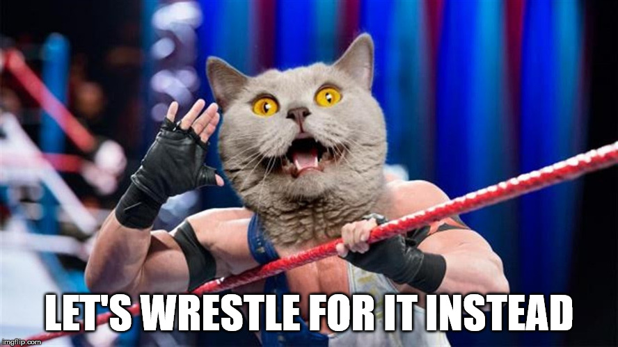 LET'S WRESTLE FOR IT INSTEAD | made w/ Imgflip meme maker