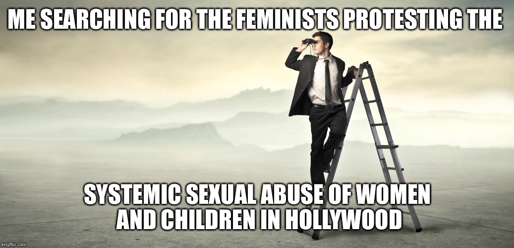 ME SEARCHING FOR THE FEMINISTS PROTESTING THE SYSTEMIC SEXUAL ABUSE OF WOMEN AND CHILDREN IN HOLLYWOOD | image tagged in searching | made w/ Imgflip meme maker