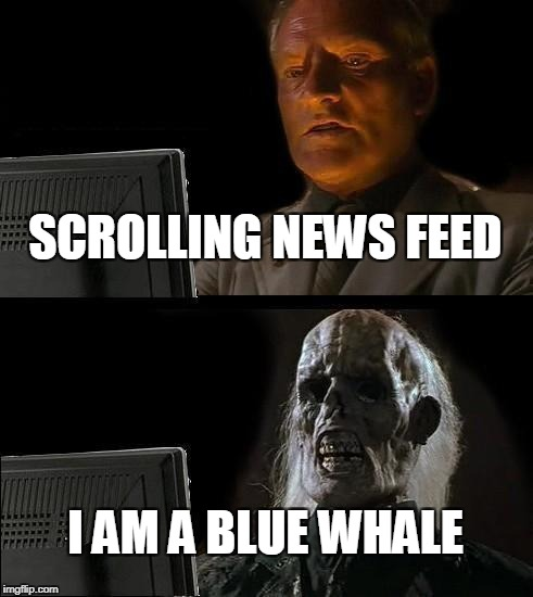 Ill Just Wait Here Meme | SCROLLING NEWS FEED I AM A BLUE WHALE | image tagged in memes,ill just wait here | made w/ Imgflip meme maker