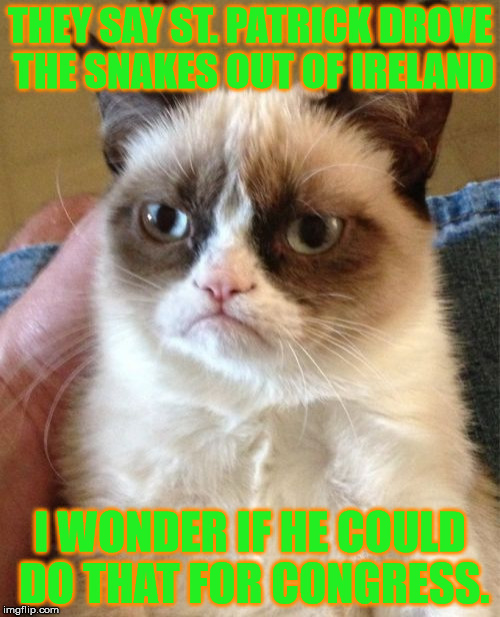 If only | THEY SAY ST. PATRICK DROVE THE SNAKES OUT OF IRELAND I WONDER IF HE COULD DO THAT FOR CONGRESS. | image tagged in memes,grumpy cat,snakes,st patrick,ireland,congress | made w/ Imgflip meme maker