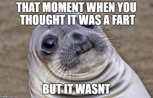 Awkward Moment Sealion Meme | THAT MOMENT WHEN YOU THOUGHT IT WAS A FART BUT IT WASNT | image tagged in memes,awkward moment sealion | made w/ Imgflip meme maker