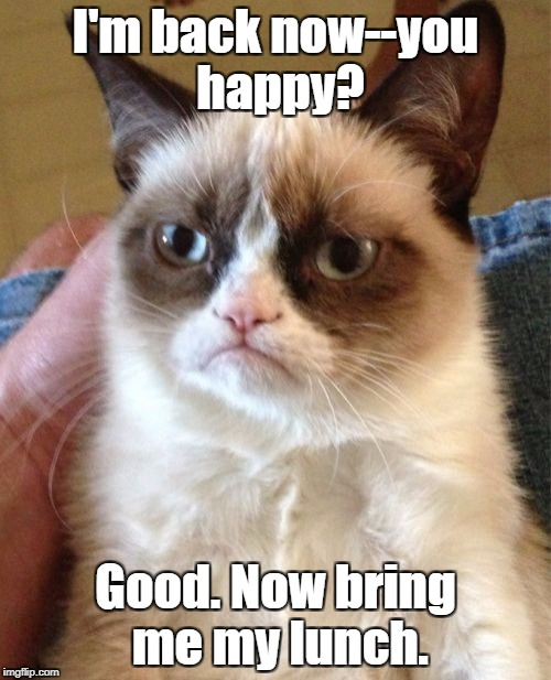 Grump Cat runs away...for a few... | I'm back now--you happy? Good. Now bring me my lunch. | image tagged in memes,grumpy cat,run away | made w/ Imgflip meme maker