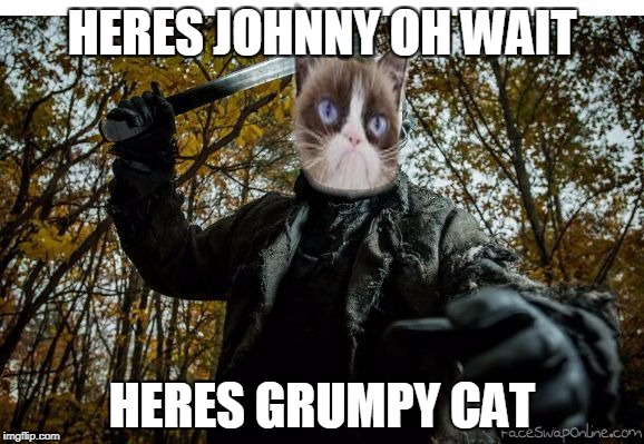 HERES JOHNNY OH WAIT HERES GRUMPY CAT | image tagged in grumpy cat jason,friday the 13th,memes | made w/ Imgflip meme maker