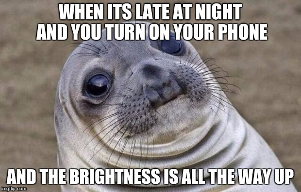 why phone why | WHEN ITS LATE AT NIGHT AND YOU TURN ON YOUR PHONE AND THE BRIGHTNESS IS ALL THE WAY UP | image tagged in memes,awkward moment sealion | made w/ Imgflip meme maker