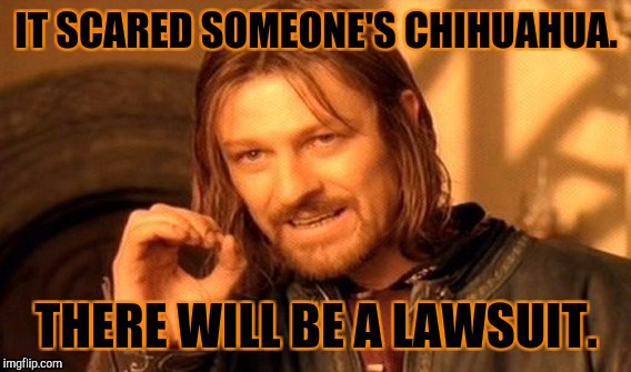One Does Not Simply Meme | IT SCARED SOMEONE'S CHIHUAHUA. THERE WILL BE A LAWSUIT. | image tagged in memes,one does not simply | made w/ Imgflip meme maker