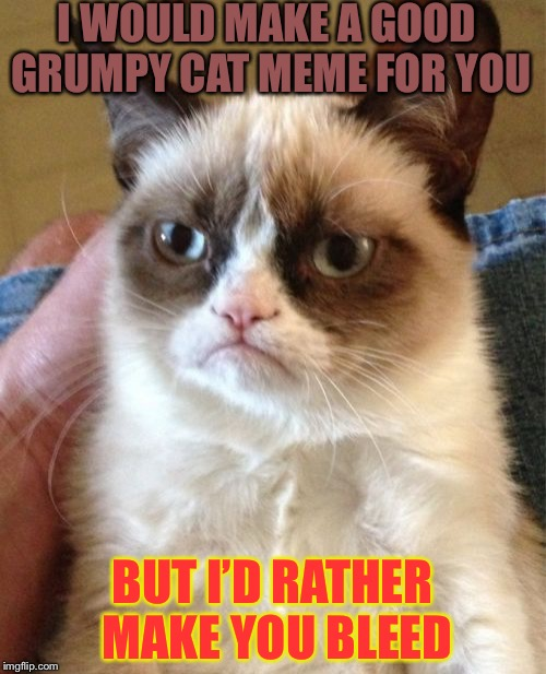 Meme | I WOULD MAKE A GOOD GRUMPY CAT MEME FOR YOU BUT I'D RATHER MAKE YOU BLEED | image tagged in memes,grumpy cat | made w/ Imgflip meme maker