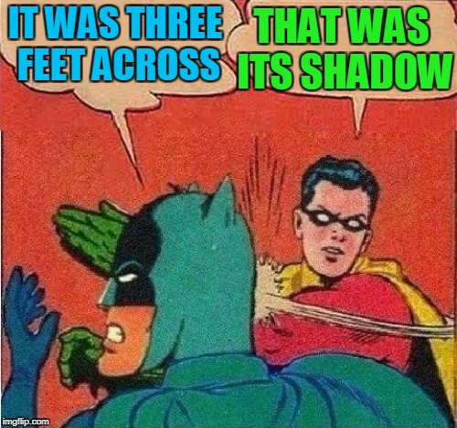 Robin Slapping Batman Double Bubble | IT WAS THREE FEET ACROSS THAT WAS ITS SHADOW | image tagged in robin slapping batman double bubble | made w/ Imgflip meme maker