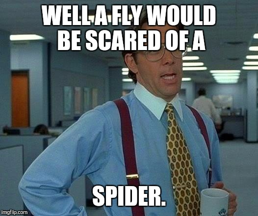 That Would Be Great Meme | WELL A FLY WOULD BE SCARED OF A SPIDER. | image tagged in memes,that would be great | made w/ Imgflip meme maker