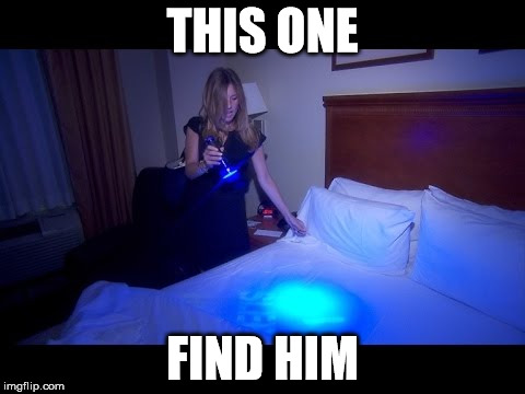 THIS ONE FIND HIM | made w/ Imgflip meme maker
