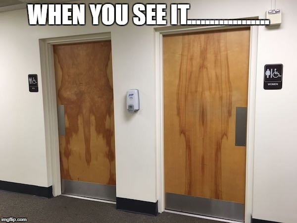 When you see it....  | WHEN YOU SEE IT.................. | image tagged in womens room,his  hers,mens room,when you see it | made w/ Imgflip meme maker