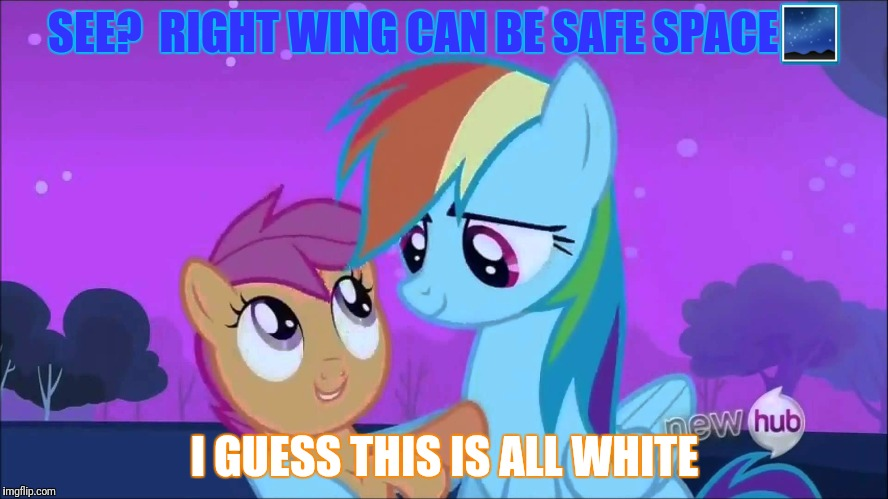 SEE?  RIGHT WING CAN BE SAFE SPACE | made w/ Imgflip meme maker
