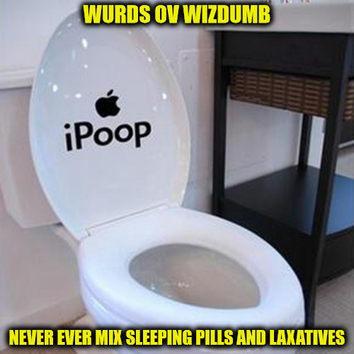 Things could get messy | WURDS OV WIZDUMB NEVER EVER MIX SLEEPING PILLS AND LAXATIVES | image tagged in truism,sleeping pills,laxative,toilet,words of wisdom | made w/ Imgflip meme maker