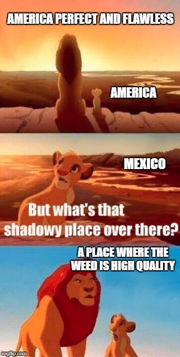 Simba Shadowy Place Meme | AMERICA PERFECT AND FLAWLESS A PLACE WHERE THE WEED IS HIGH QUALITY AMERICA MEXICO | image tagged in memes,simba shadowy place | made w/ Imgflip meme maker