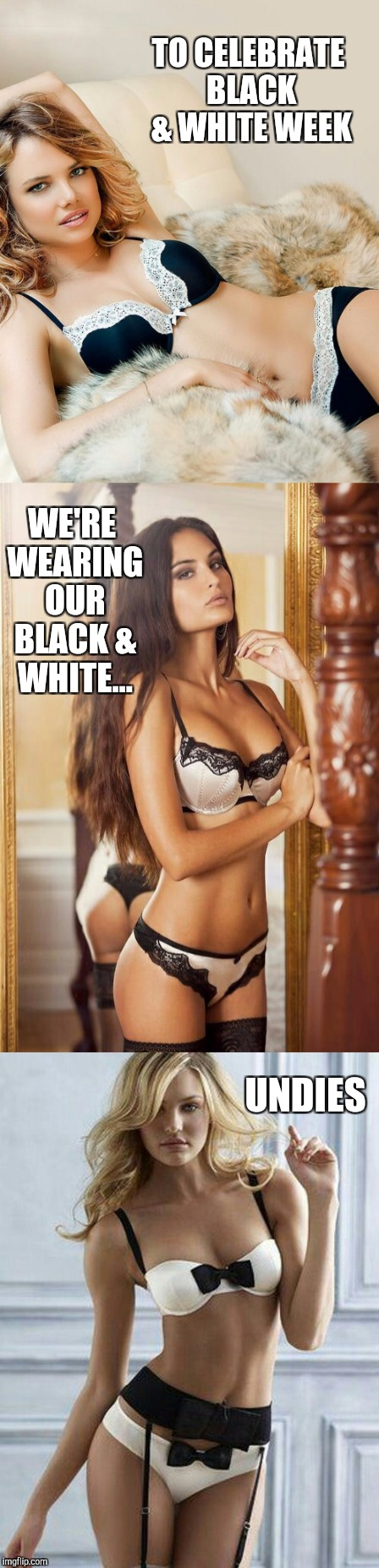 Now this is how Black & White Week should be celebrated! B&W Meme Week, a Pipe_Picasso event | TO CELEBRATE BLACK & WHITE WEEK WE'RE WEARING OUR BLACK & WHITE... UNDIES | image tagged in black and white,black and white week,jbmemegeek,sexy women,lingerie,panties | made w/ Imgflip meme maker