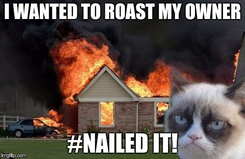 Burn Kitty Meme | I WANTED TO ROAST MY OWNER #NAILED IT! | image tagged in memes,burn kitty,grumpy cat | made w/ Imgflip meme maker