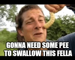 GONNA NEED SOME PEE TO SWALLOW THIS FELLA | image tagged in bear grylls | made w/ Imgflip meme maker