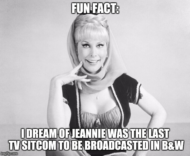 My last B&W week submission with a fun fact, it's just a fun way to end a great week. Thank you. | FUN FACT: I DREAM OF JEANNIE WAS THE LAST TV SITCOM TO BE BROADCASTED IN B&W | image tagged in bw week,black  white week | made w/ Imgflip meme maker
