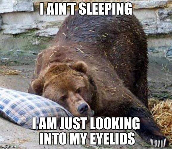 Not Sleeping | I AIN'T SLEEPING I AM JUST LOOKING INTO MY EYELIDS | image tagged in sleep,memes,funny | made w/ Imgflip meme maker