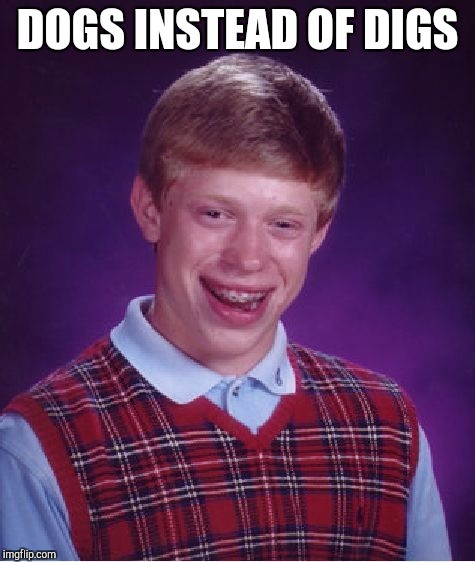 Bad Luck Brian Meme | DOGS INSTEAD OF DIGS | image tagged in memes,bad luck brian | made w/ Imgflip meme maker