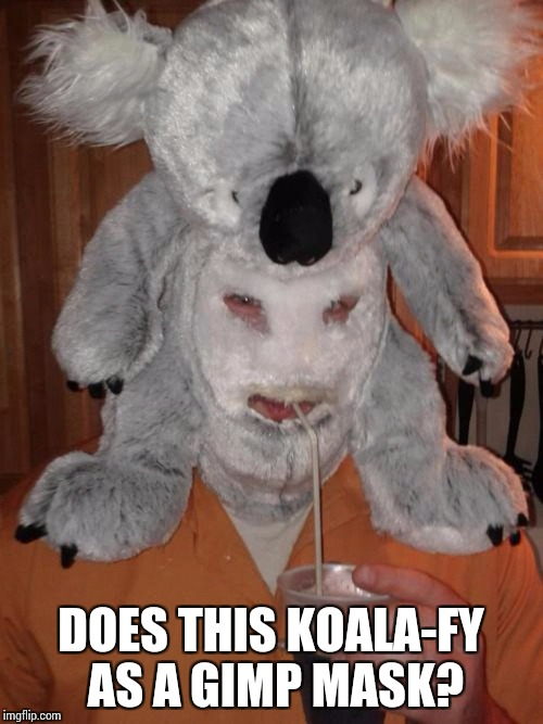 DOES THIS KOALA-FY AS A GIMP MASK? | made w/ Imgflip meme maker