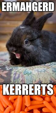 Excited bunny | ERMAHGERD KERRERTS | image tagged in bunny,carrots | made w/ Imgflip meme maker