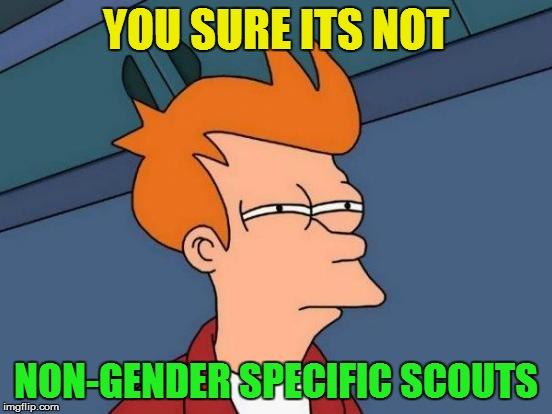 Futurama Fry Meme | YOU SURE ITS NOT NON-GENDER SPECIFIC SCOUTS | image tagged in memes,futurama fry | made w/ Imgflip meme maker