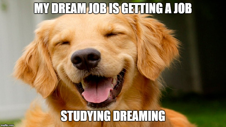 smiling dog | MY DREAM JOB IS GETTING A JOB STUDYING DREAMING | image tagged in smiling dog | made w/ Imgflip meme maker