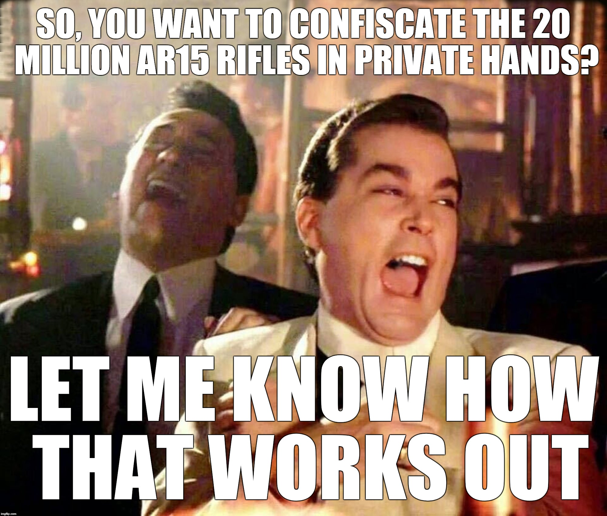 Liotta-Improved | SO, YOU WANT TO CONFISCATE THE 20 MILLION AR15 RIFLES IN PRIVATE HANDS? LET ME KNOW HOW THAT WORKS OUT | image tagged in liotta-improved | made w/ Imgflip meme maker