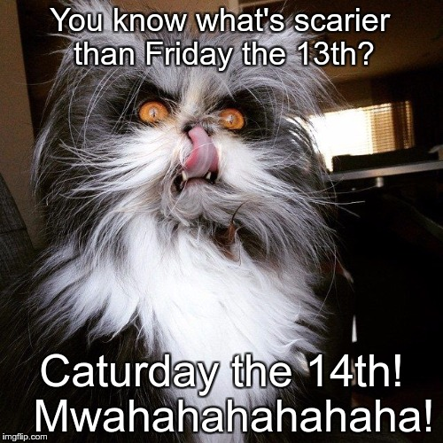 You know what's scarier than Friday the 13th? Caturday the 14th!  Mwahahahahahaha! | image tagged in scary looking devil cat | made w/ Imgflip meme maker