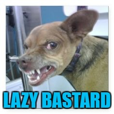 LAZY BASTARD | made w/ Imgflip meme maker