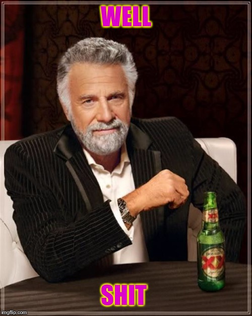 The Most Interesting Man In The World Meme | WELL SHIT | image tagged in memes,the most interesting man in the world | made w/ Imgflip meme maker